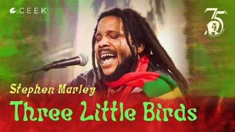 Three Little Birds video